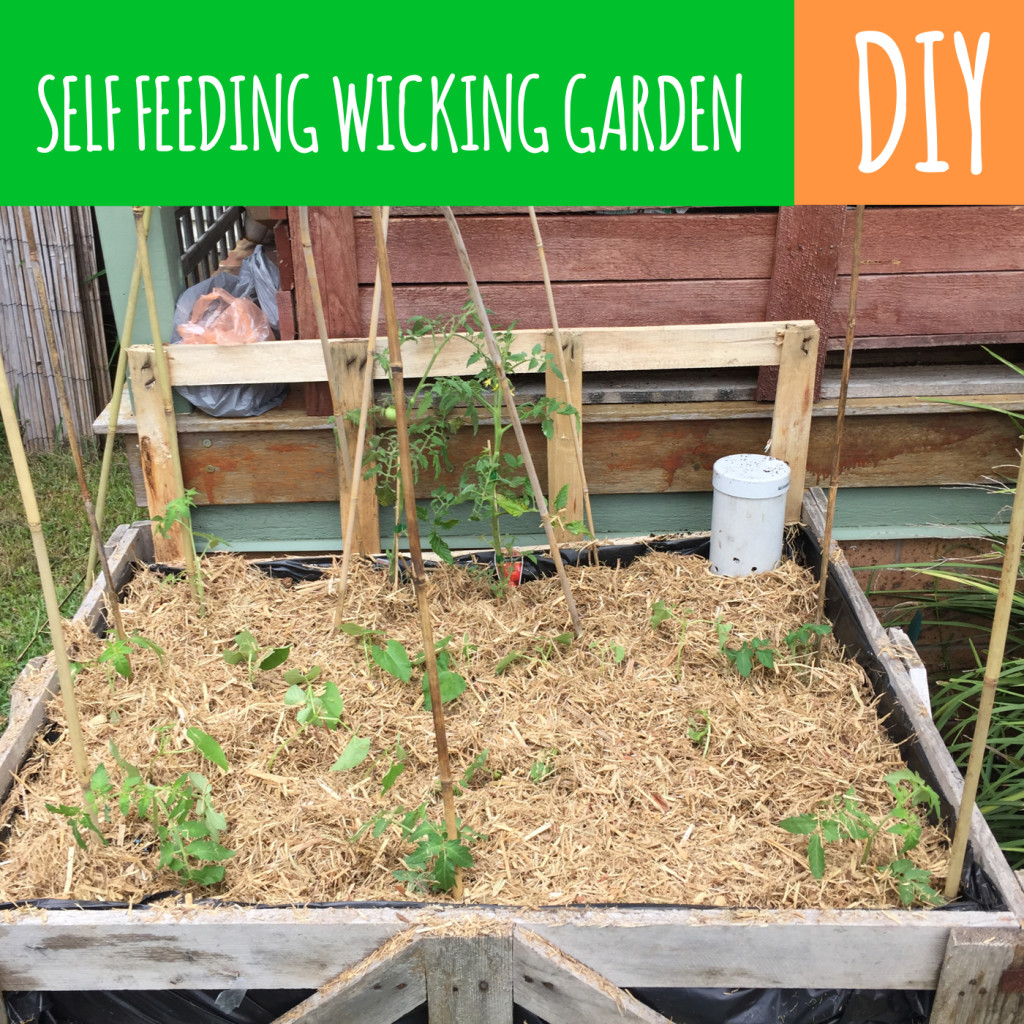 selffeedingwickinggardenbed